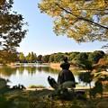 Photos: 秋色の公園(2020)