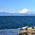 Photos: 江の島にて