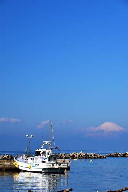 Photos: 春の漁港