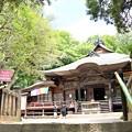 Photos: 深大寺