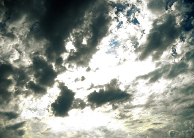 Photos: 雲12