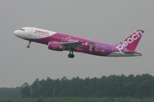 A320 Peachラッピング2機目 JA809P 2013.08