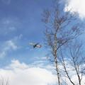 Photos: ERJ170 冬晴れ