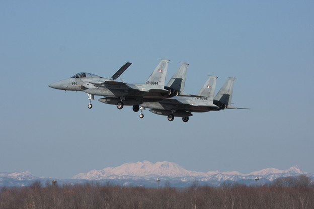 F-15J Formation Landing 203sq