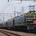 EF81-44(トワイライトEX)