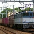 Photos: EF65-2060【75レ】
