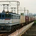 Photos: EF65-2088【5087レ】