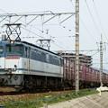 Photos: 5087レ【EF65-2089牽引】