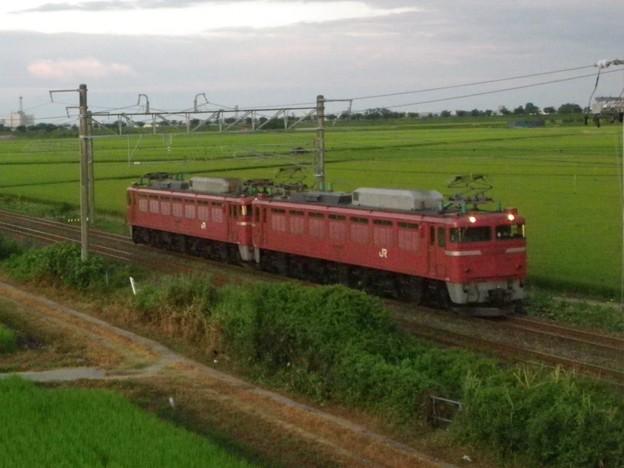 EF81 108+EF81 107 臨時寝台特急「日本海」 牽引機送り込み