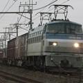 Photos: EF66 109牽引 4083レ