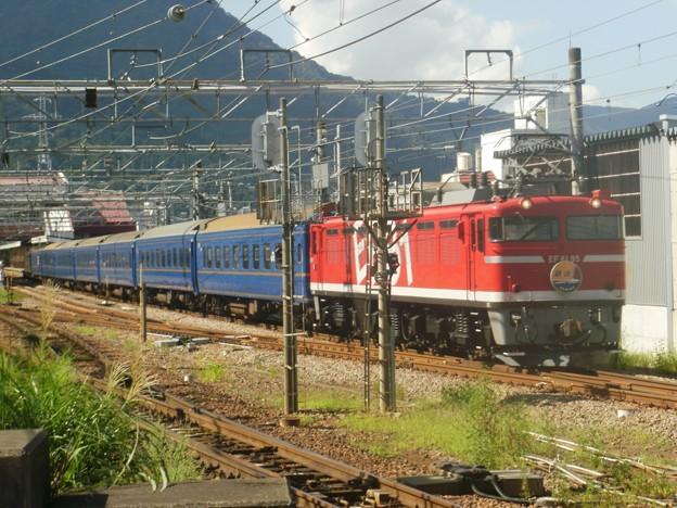 EF81 95+24系6B+EF64 37 団体臨時列車「越後」