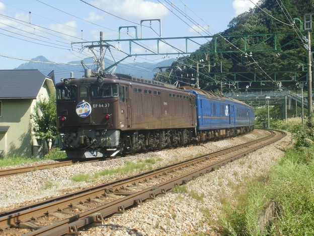EF81 95+24系6B+EF64 37 団体臨時列車「越後」(後追い)