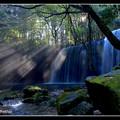 写真: 鍋ヶ滝の光芒