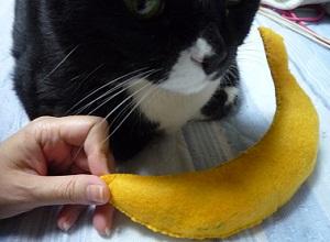 06_30猫バナナ