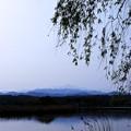 朝日に浮かぶ白山