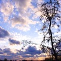 春の日の夕暮れ