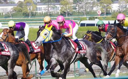 2010 産経大阪杯 テイエムアンコール号