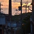 Photos: 夕暮れの小道