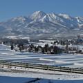 Photos: 雪晴れの妙高山