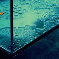 Rainy Blue #1