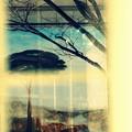 Photos: ターナーの見た風景