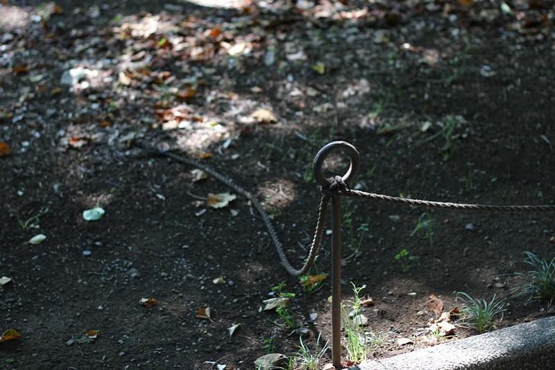 杭とロープ