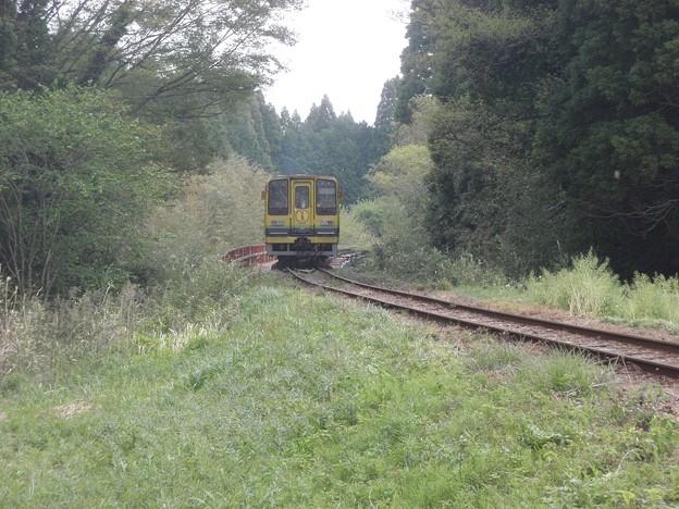 Photos: Isumi Railway / Lightweight DMU type Isumi 200