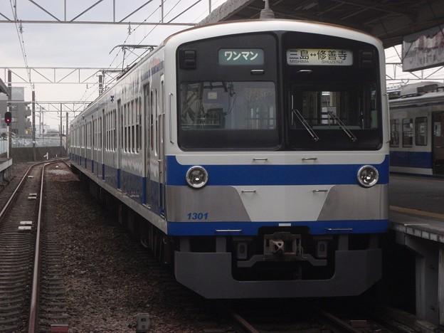 Izu Hakone Railway Sunzu Line #1301
