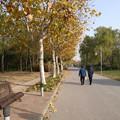 Photos: 上海 世紀公園