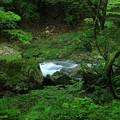 緑水力(兵庫県穴栗市 音水渓谷)