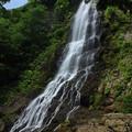 夏空に聳える天滝(兵庫県養父市)
