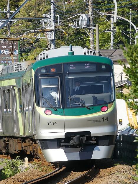 P1010029