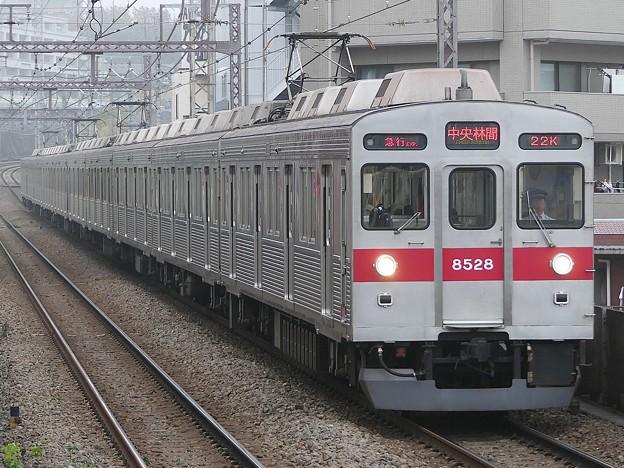 P1010452