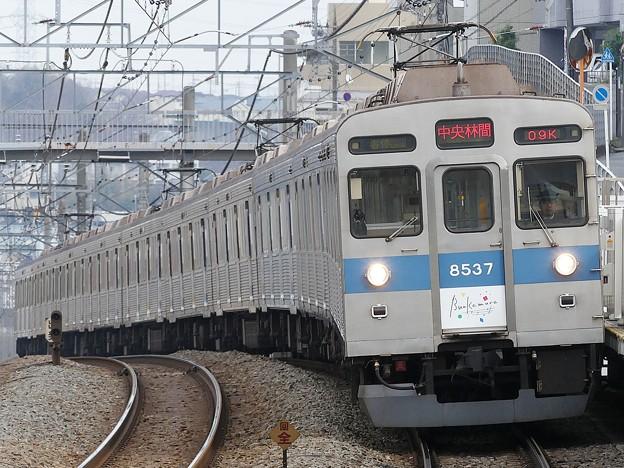 P1020124