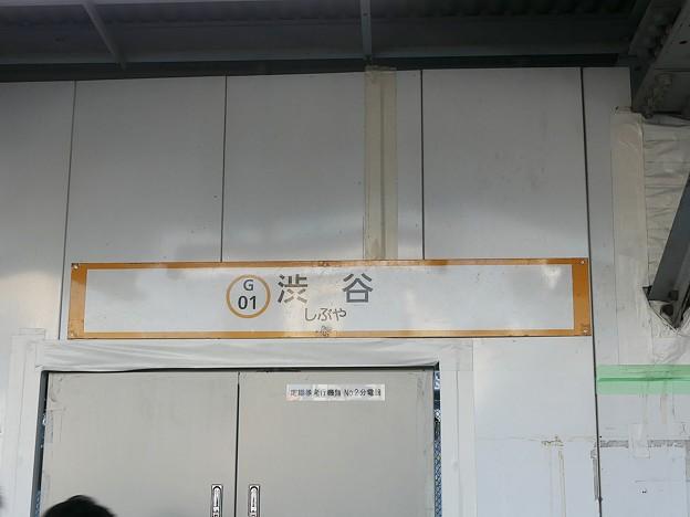 P1020380