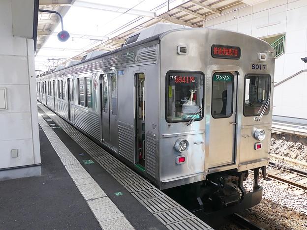 P1030657