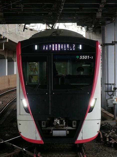 P1050523