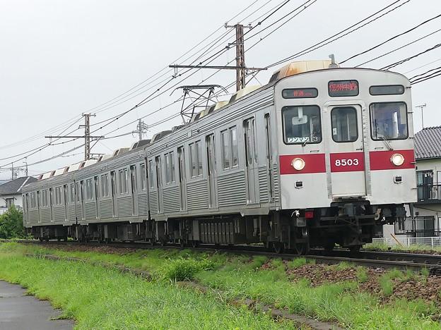 P1060048