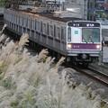 P1070530