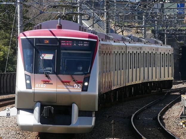 P1100288