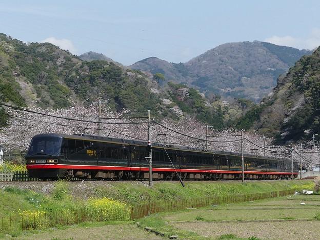 P1100447