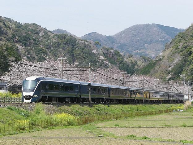 P1100473