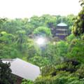Photos: 庭園 塔 0521  135 ?