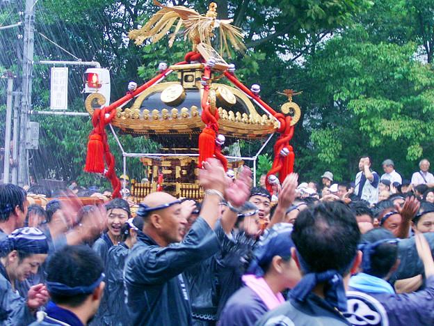 八幡祭り 句 神輿渡御 ググる 0817 070