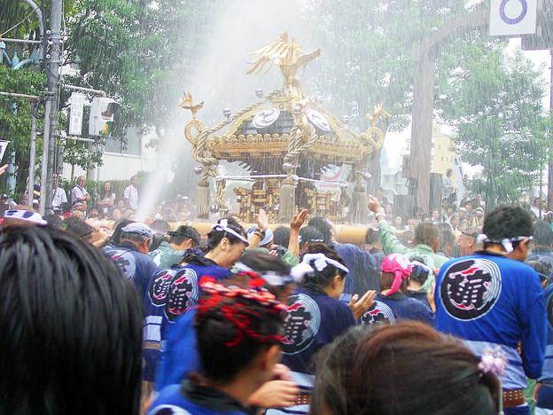 八幡祭り 神輿渡御 0817 102