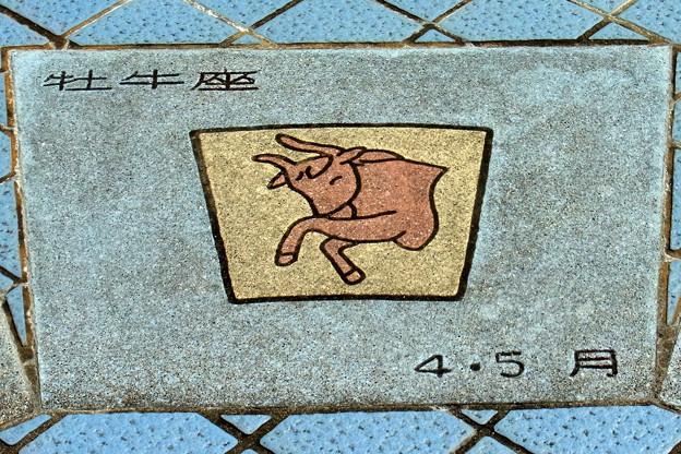 0828 4月 5月 牡牛座 造形 04