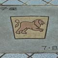 0828 7月 8月 獅子座 造形 07