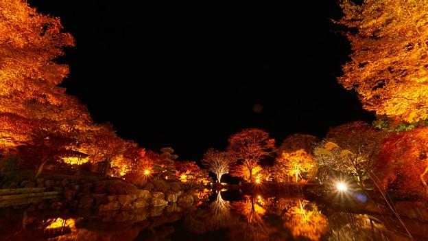 Photos: 桜山公園-4