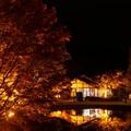 Photos: 桜山公園-3