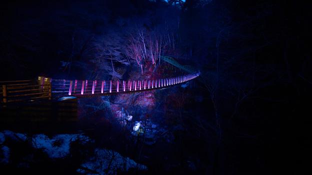尾ノ内百景-吊り橋ライトアップ